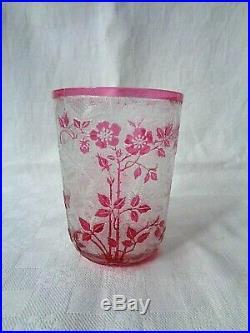 Baccarat Eglantier Goblet Flat Tumbler Cameo Glass Gobelet Cristal Grave Acide