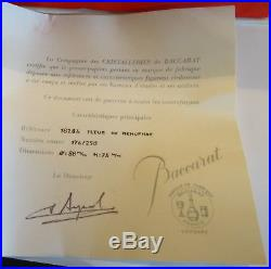Boule Presse Papier Cristal Baccarat Sulfure Numerote Nenuphar Certificat